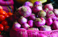 Peeling back the layers of fun: Onion festival this Saturday