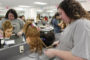Cosmetology students showcase passion, skills