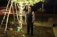 City to host tree lighting