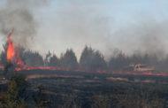 Fires plague area despite wet season