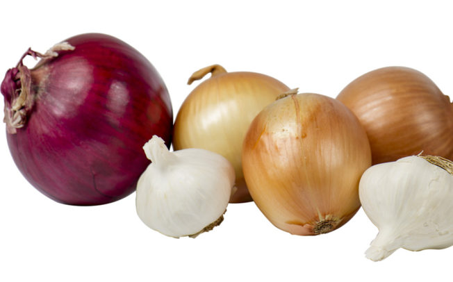 Onion Festival this Saturday