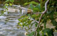 Lake Lavon clean-up effort started