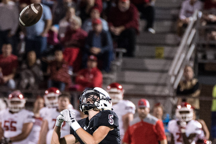 Not again: Vandals eliminate Panthers during bi-district round