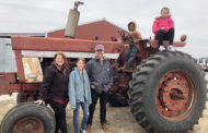 Farming provides local food opportunities