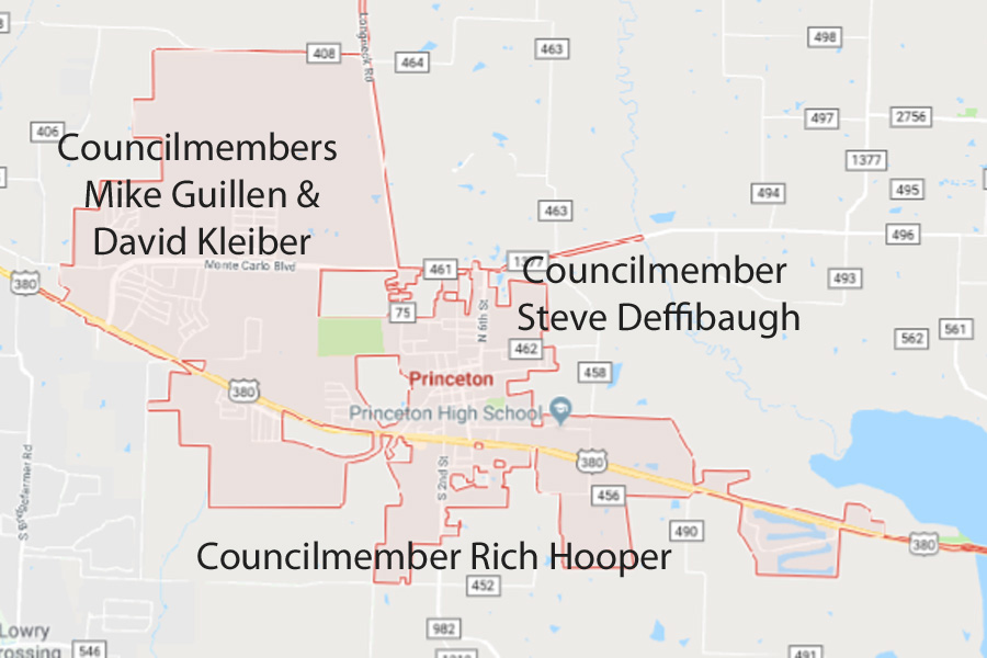 Focus areas assigned to councilmembers