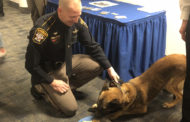 K9 retiring: No bones about it