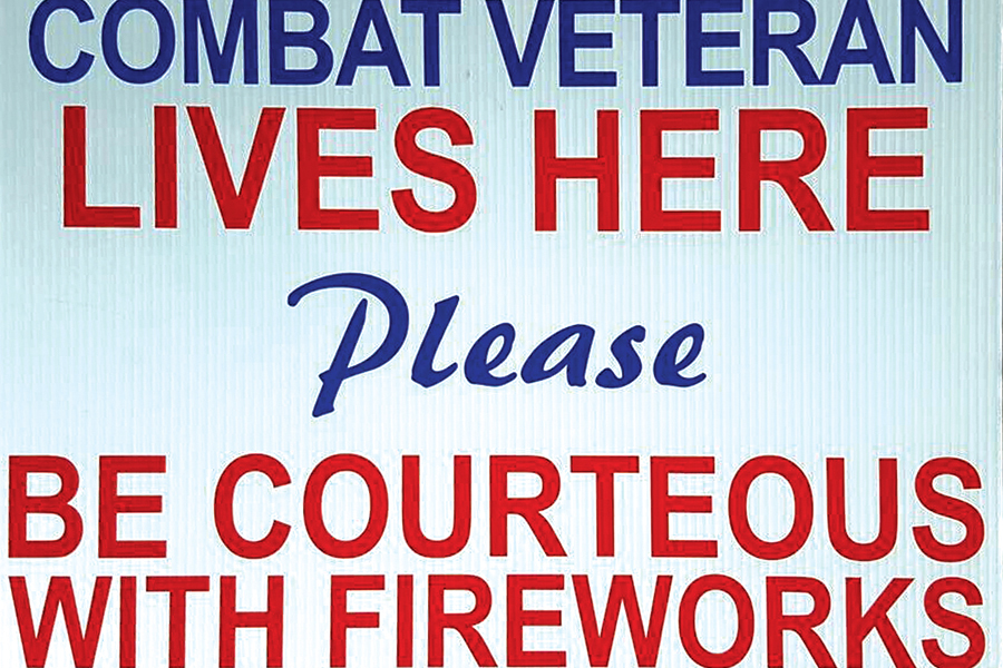Fireworks can affect pets, vets with PTSD symptoms