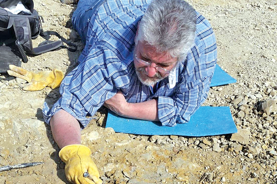 Can you dig it? Collin County family discovers prehistoric marine lizard