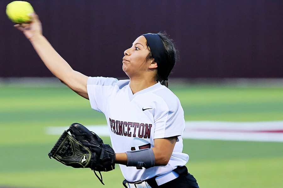Lady Panthers pounce on all-district honors in 10-5A