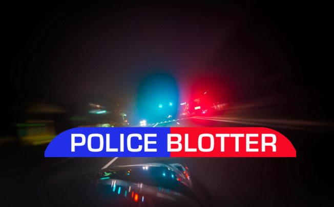 Princeton Police Blotter released
