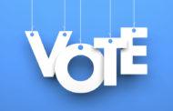 Vote for council, term limits, proposed amendments Nov. 5