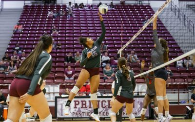 Lady Panthers lose to McKinney North