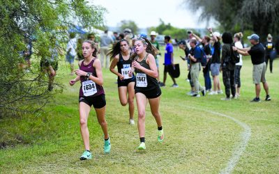 Leverton qualifies for state cross-country meet